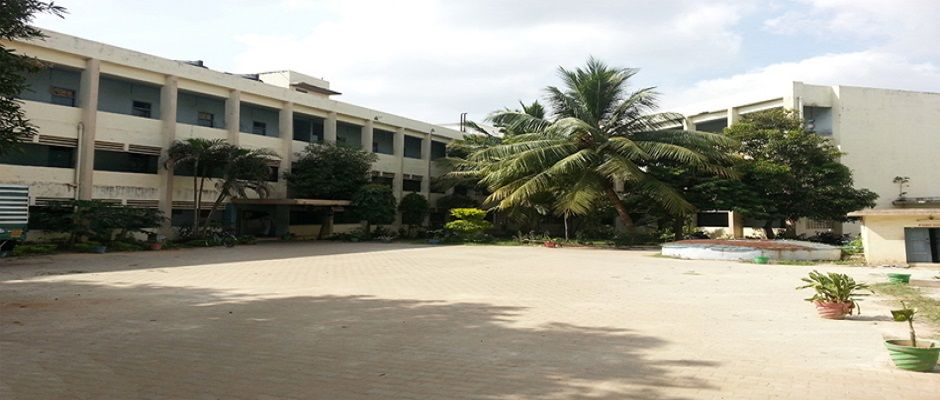 Fee Structure of The New College Chennai