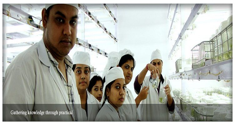 University Of Science And Technology (USTM) Ri Bhoi