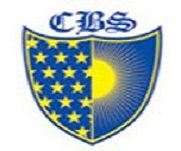 CBS Group of Institutions logo