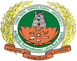 Agricultural College And Research Institute logo