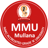 MM College of Pharmacy logo