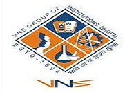 VNS Business School logo