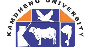 KAMDHENU UNIVERSITY, GANDHINAGAR logo