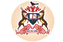 Rai Sahab Bhanwar Singh College, Nasrullaganj, Sehore logo