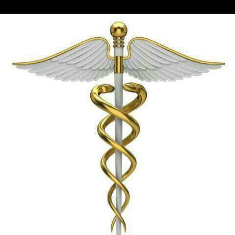 S B Shirkoli Homoeopathic Medical College logo