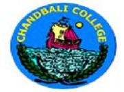Chandabali College logo